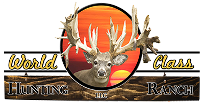High Fence Deer Hunting – World Class Hunting Ranch