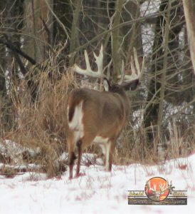 Whitetail Hunting package Father Daughter