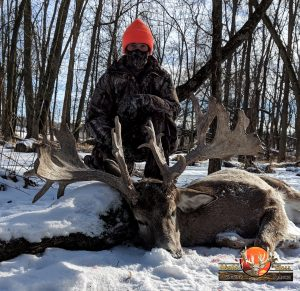 Whitetail Trophy.1518