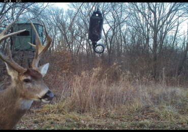 high fence deer hunting, ohio deer ranch, guided whitetail hunt, whitetail preserve, ohio deer farm